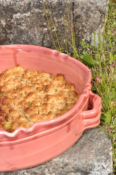 mjolkfria-recept-rabarberpaj